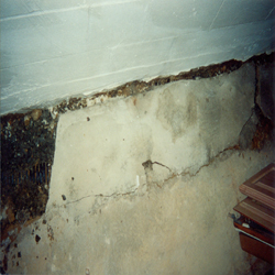 Failed Waterproofing